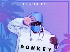 Dr Afrobuzz Donkey