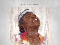 Bee Cee Moh unwraps The WonderLines Project