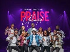 Tosinbee Praise Unlimited